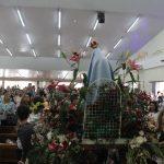 Missa do dia de Nossa Senhora de Fátima e Ascensão do Senhor